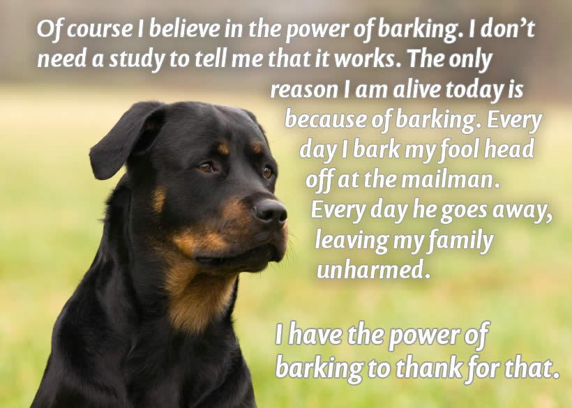 power-of-barking-xl