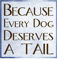 every dogs